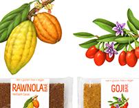 Earthling Organics Packaging Illustrations