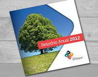 Relatório Anual Ambipar
