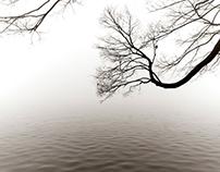 Fog on the West Lake - 杭州西湖