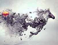 Zebra composit