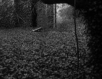 Etrange Garden