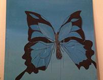 Butterfly B 1.2