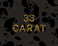 33 Carat NMIT Graduate Exhibition
