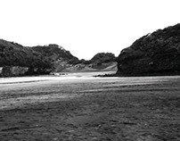 Photomontage Research, (Te Henga) Bethells Beach