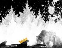 King Bear - Video Study