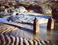 Bulverhythe Rocks