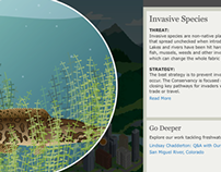 Freshwater Conservation: Interactive DVD
