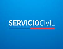 Servicio Civil - RRSS