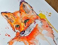 Fox - Watercolor Illustration