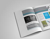 TYPO Graphic Magazine