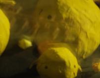 Dame un limón