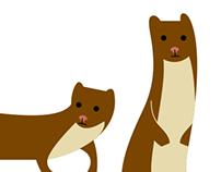 Weasels