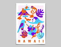Hawaii Postcard, Bag and T-shirt