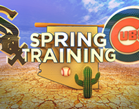Spring Training 3D Graphics Package