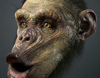 Monkey WIP