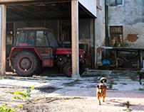 Photographs of Cheb, Czech Republic
