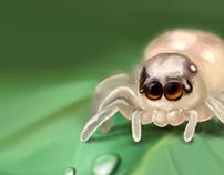 2 Eyed Spider