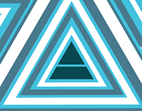 30 Seconds To Mars Illusion Poster