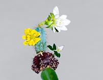 Cactus / flower blend project