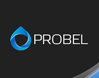 Branding I probel