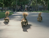 DirecTV 'Squirrels'