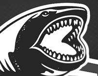 Tiburones Insulares FC