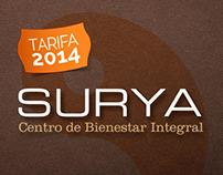 Surya / Price chart 2014