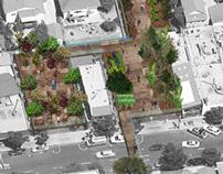 Edible Urban Garden