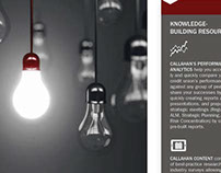 Tri-Fold Brochure - Callahan 2014