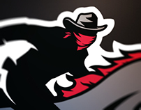 A11FL Official Tampa Bay Bandits Identity
