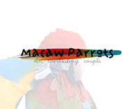 MACAW PARROTS | CARPET DESIGN