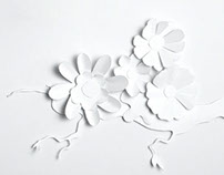 Paper Flowers Illustration