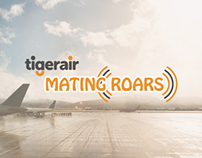 Young Glory 2013-14 [Oct - Brief 2]: Tiger Mating Roars