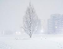 TOKYO White Valentine's Day