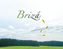 Brizá Cooling Services Co.