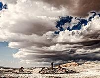 Donde hábita el silencio...Desierto de Atacama, Chile.