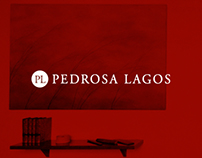 Pedrosa Lagos / Responsive Website