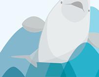 The Bluega Whale