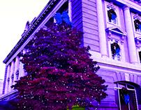 City Hall/Christmas Time