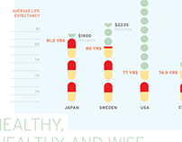 Healthy, Wealthy and Wise infographic