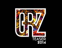 2014 Resume + Teaser Book