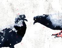 Pigeons and men