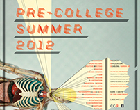CCA Pre-College Summer 2012