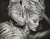 Beauté Aviaire [Avian Beauty] Vol i.
