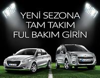 Web Banner - Peugeot Campaign