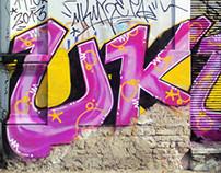 UQZ Walls 2013