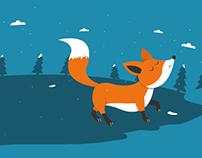 Foxy night