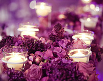 Shimmery Dream Wedding