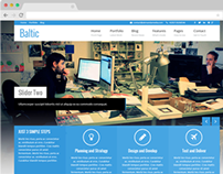Baltic - Responsive Business WordPress Themes