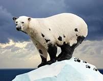GREENPEACE - Save the ARCTIC Campaign